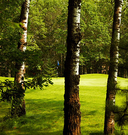 View Course Flyover